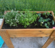 En plus de notre coin potager nous avons aussi installé un carré potager.