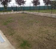 L'herbe commence à pousser sur notre terrain