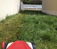 l'herbe haute de notre jardin