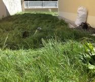 Notre rotofil est presque entièrement recouvert par l'herbe.