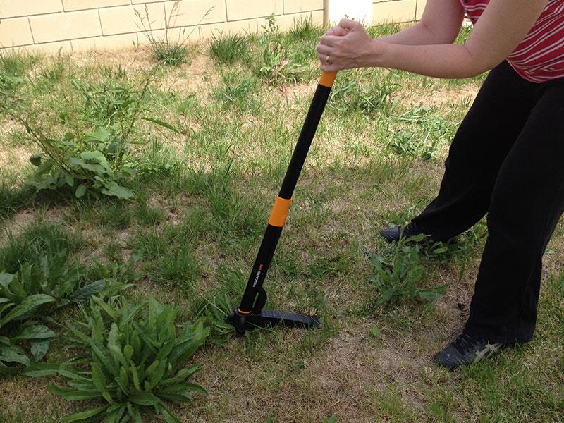 Pour arracher cette mauvaise herbe, il faut faire basculer le manche vers soi.
