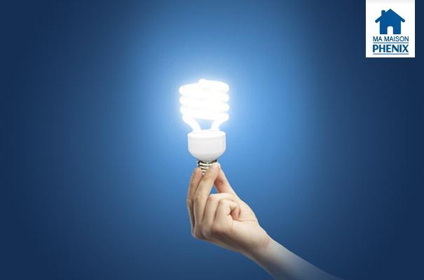 Raccordement électricité Maison Phénix